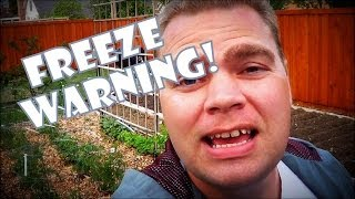 Freeze Warning! in April & adding Veggie Mix to the Garden