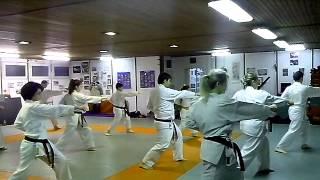 Wado Karate KATA edzés a Tűzmadár SE.-nél