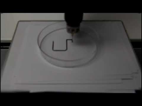0 - Nanocellulose verbessert 3D-Druck von Kohlenstoff-Nanoröhrchen für Wearable Electronics