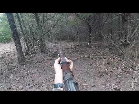 Lee Enfield Mk1 Hog Hunt
