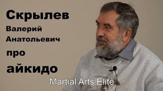 Dialog 8: Скрылев Валерий Анатольевич про айкидо