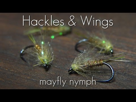 Fly Tying Mayfly Nymph | Hackles & Wings