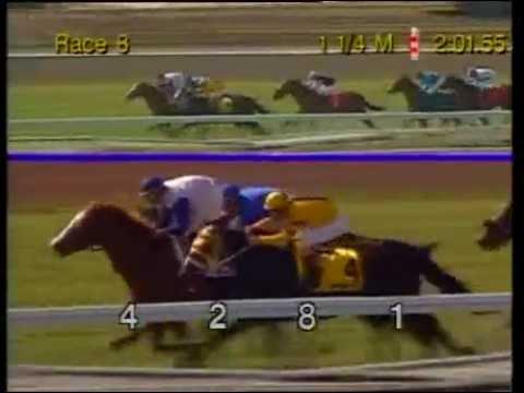 1995 San Juan Capistrano Handicap - Red Bishop