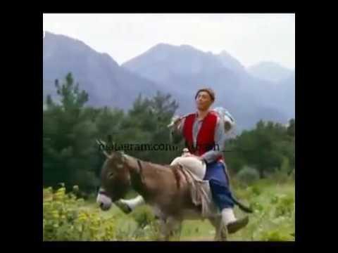 Самые смешные азербайджанские морды - Скачать видео с