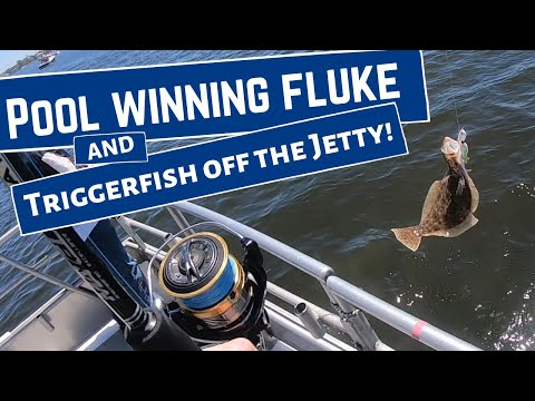 Atlantic Highlands Fishing NJ W/ Pool Winning Fluke On The Sea Hunter