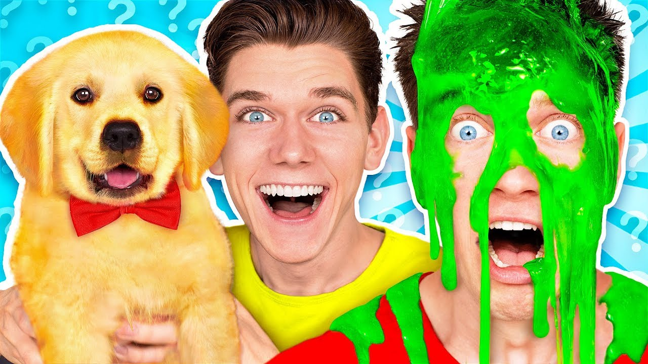 [VIDEO] - Dogs Pick our Mystery Slime Challenge! Learn How To Make the Best DIY Funny Switch Up Oobleck Game 4
