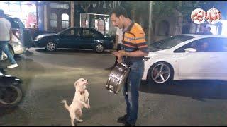 أخبار اليوم | صابر « الحاوي » يثير دهشة المواطنين بكلب « لولو»