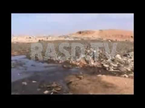 The destruction of fisheries in Western Sahara.