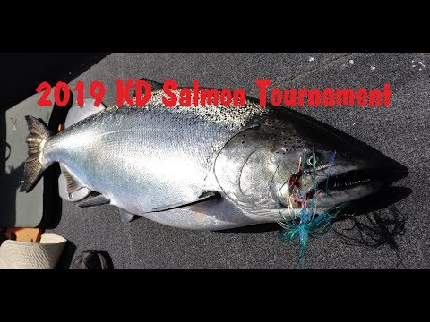 Lake Michigan Salmon Fishing 2019 KD Tournament Lake Michingan (Wisconsin)