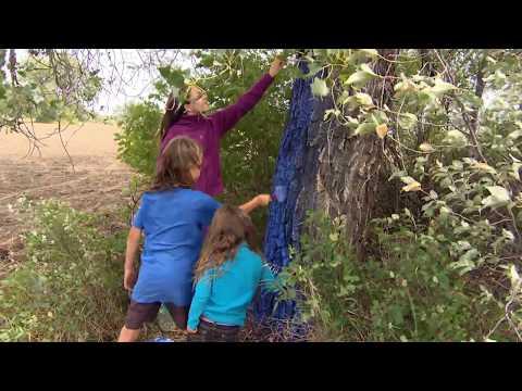Saskatchewan Landowner Explores Her Creative Side To Stop Construction Of A Pipeline