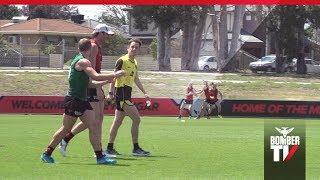 BTV: AFLX | The Rules