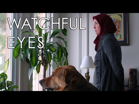 Thumbnail: WATCHFUL EYES - A Muslim Woman and Her Dog