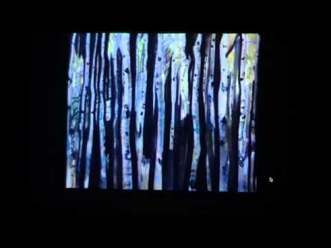 Jeremy Herndl talk at V.I. School of Art