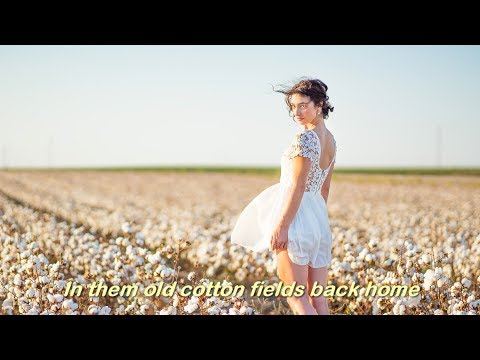 Cotton Fields (1969)  -  CREEDENCE CLEARWATER REVIVAL (CCR)  - Lyrics