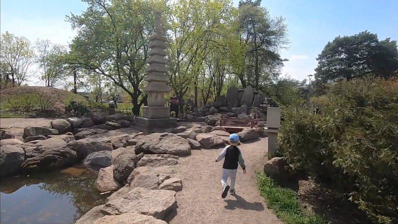 VLOG Японский парк Киото в Киеве, аллея сакуры/ май 2021