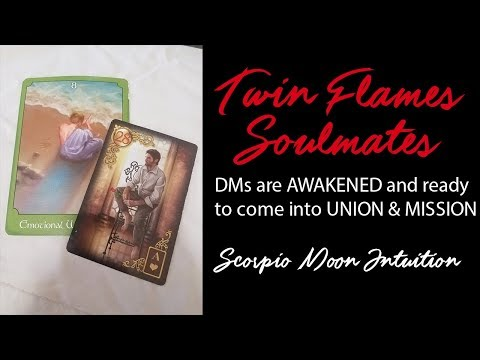 🔥TWIN FLAME DAILY READING🔥DMs are AWAKENED and ready to come into UNION & MISSION