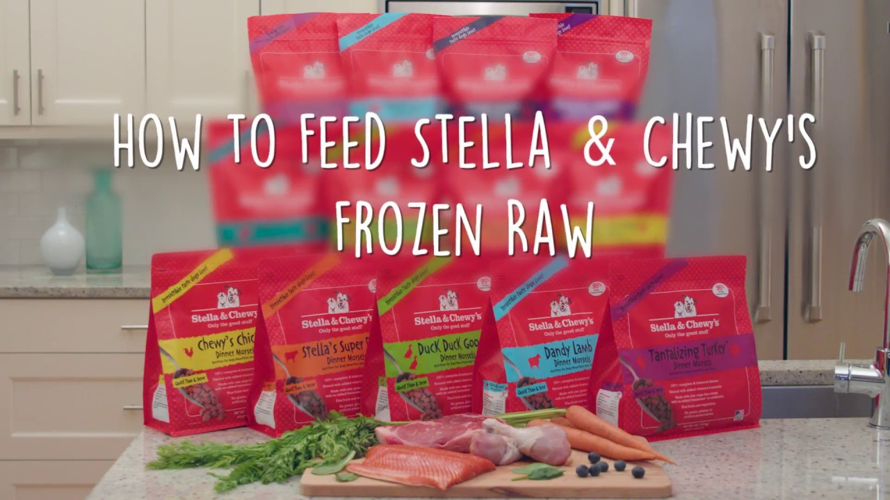 How To Feed Stella Chewys Frozen Raw Patties Dog Food Youtube
