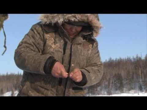 зимния рыбалка на лене видео