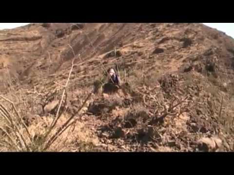 Sikort Chuapa & Sauceda Mountains east of Gila Bend