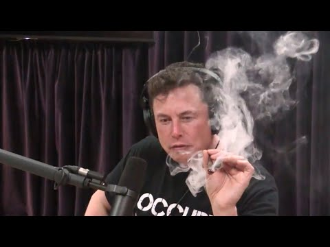 Jed Whitaker - What's Elon Musk Smoking?