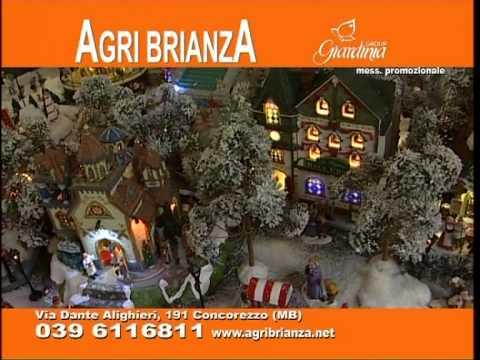 Agribrianza v2 2012 youtube for Agri brianza natale