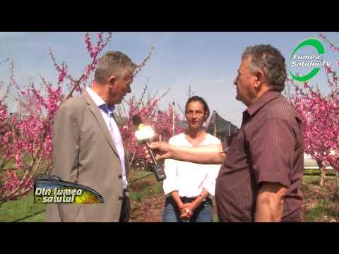 Noutăți în pomicultura de la ICDP Mărăcineni