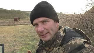 RUSSIAN BASS B200RBF в полке 6 шт