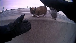 North Kansas City police officer rescues tiny kitten from median wall on I-29
