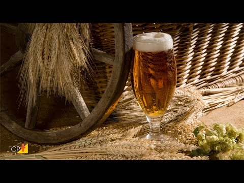 Curso a Distância Como Montar Uma Microcervejaria e Produzir Cerveja Artesanal CPT