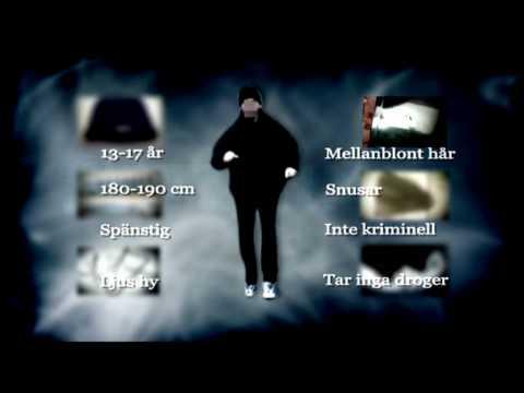 dubbelmordet linköping