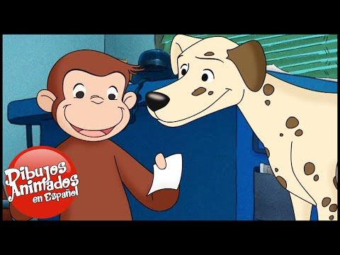 Jorge El Curioso En Español 🐵¿Dónde Está El Perro Bombero 🐵 Capitulos Completos Del Mono Jorge