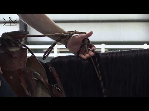 How to hold your reins in the Two Rein set up | Developing & Demystifying the Bridle Horse Series