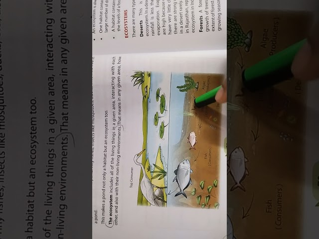 Std 4 Science Ch 8 WHERE ANIMALS LIVE, part 1