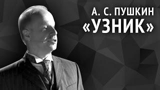 Александр Пушкин. Узник
