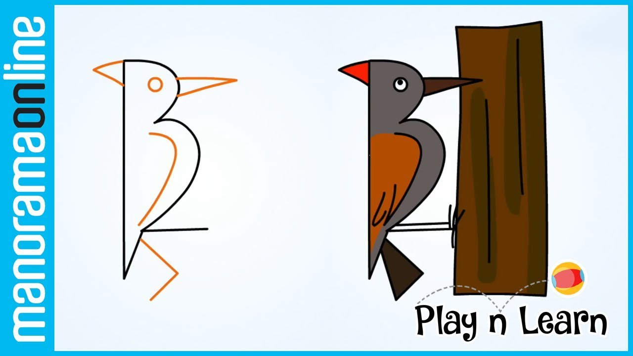 Woodpecker with 12 | Easy Drawing Tips for Kids | Manorama Online ...