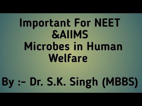 Microbes in Human Welfare For - Biology Class 12th, NEET & AIIMS { PART 1} - Dr.S.K.Singh thumbnail