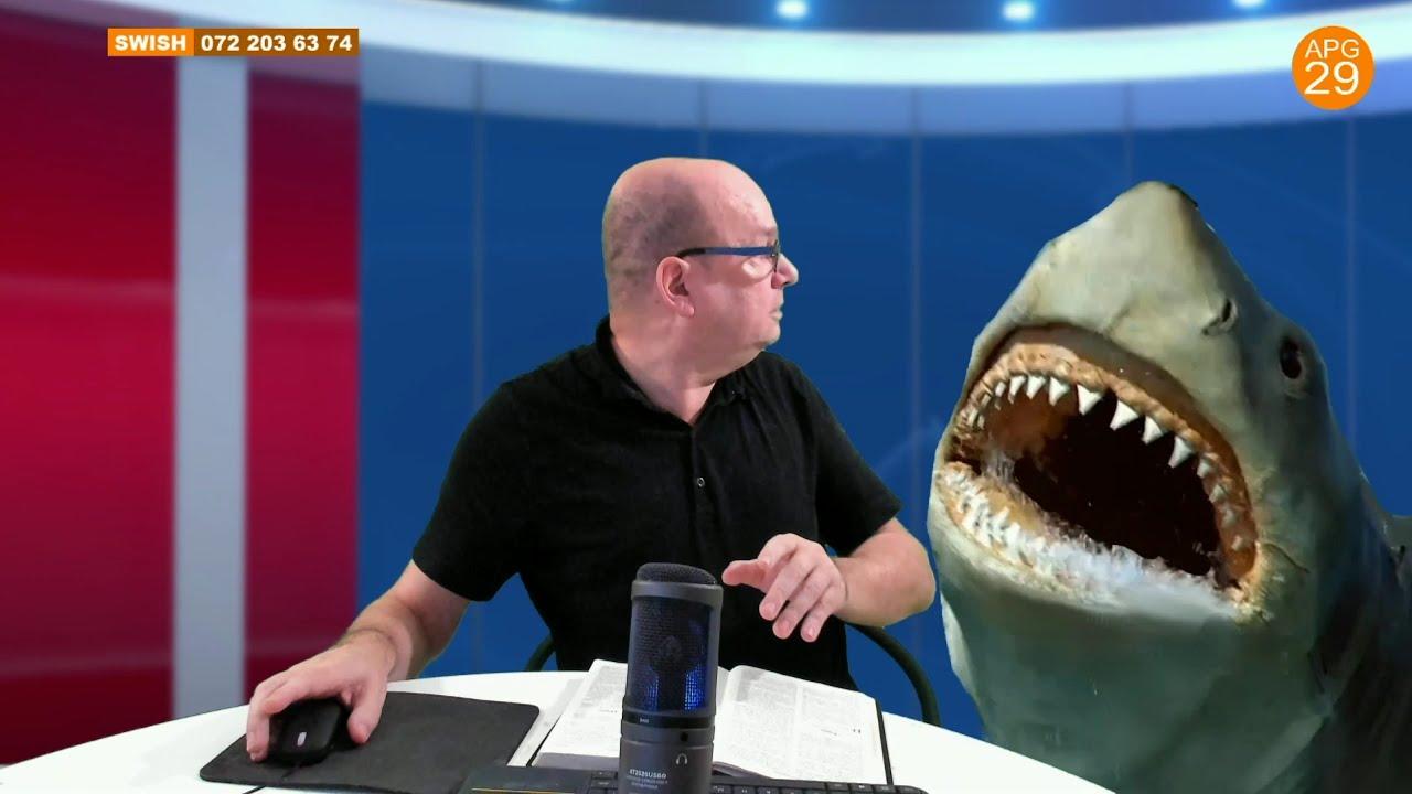 Christer Åberg och en haj.