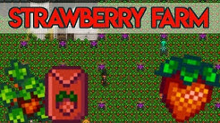 🍓Strawberry Farm Project!🍓 - *SWEET SUCCESS?* - Stardew Valley