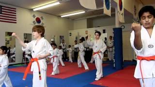 Elite Taekwondo Yellow and Orange Belt Form Routine 4/22/12