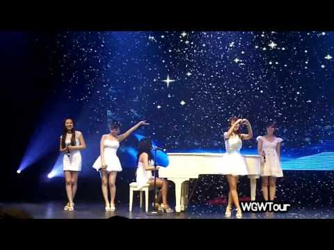 [WGTW] Wonder Girls 2010 World Tour One hour Fancam mix