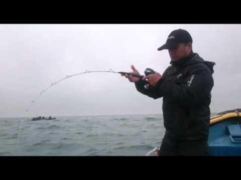 20160103 Offshore Fishing in Hong Kong Trachinotus blochii Mystus numerus 蚊洲船釣黃立倉、白鬚公