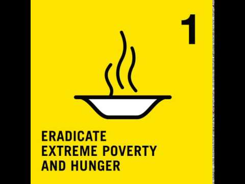 Millennium development goal one: Eradicate extreme poverty and hunger