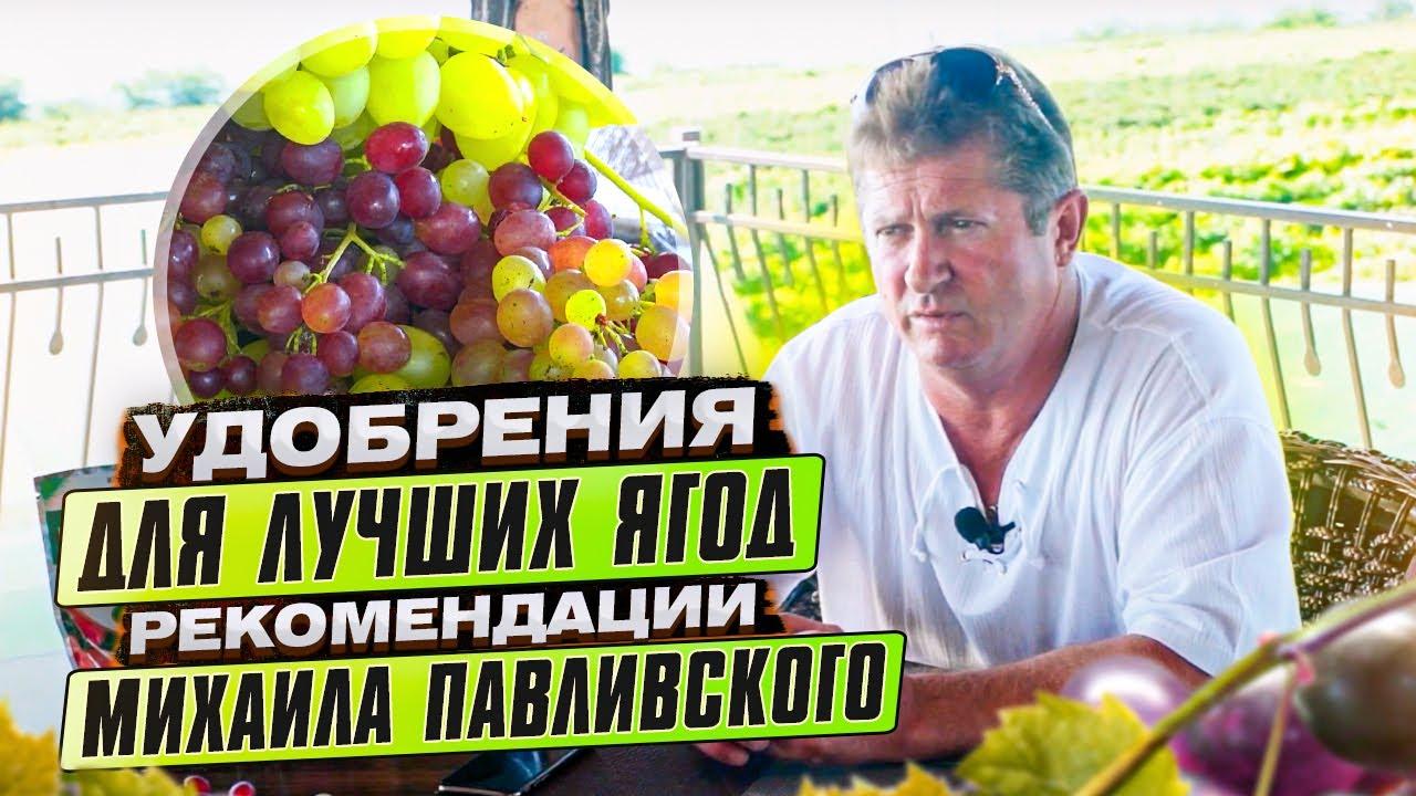 Миссия компании Clause на Украине - официальный импортер семян .