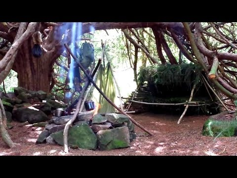 Wild Camp ~ Air Gun Rabbit Hunt ~ Survival Shelter #4