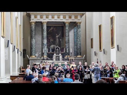Choir in Vilnius Cathedral Basilica