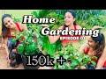 Home Gardening 1