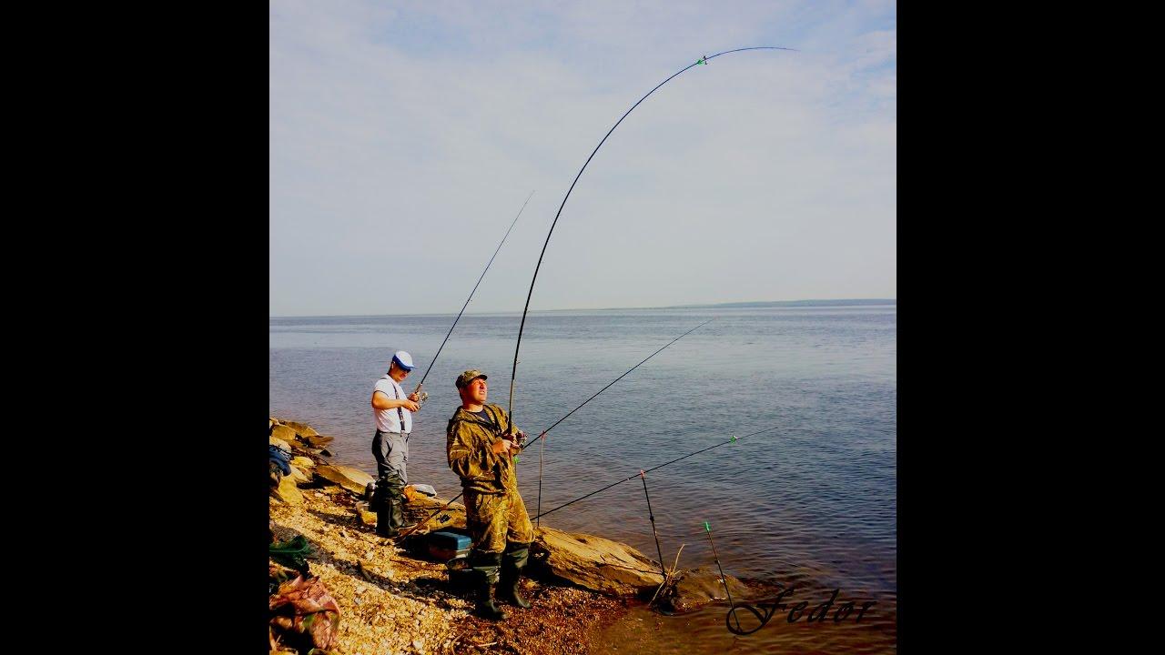 Рыбалка на реке Волге. Ловля леща на фидер. С фидором на ...