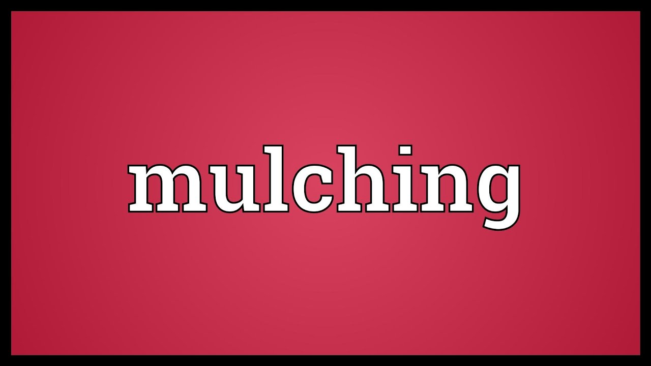 Mulching Meaning Youtube