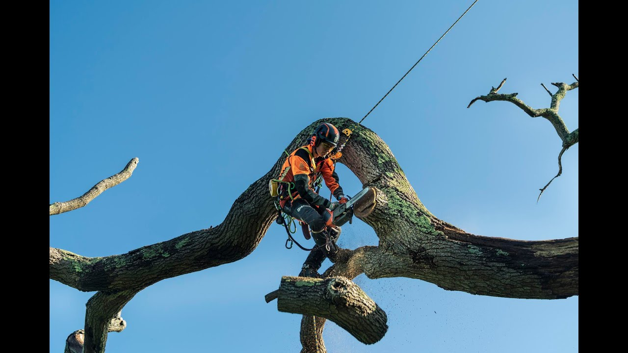 Introducing the T540i XP® and 540i XP® Battery Chainsaws