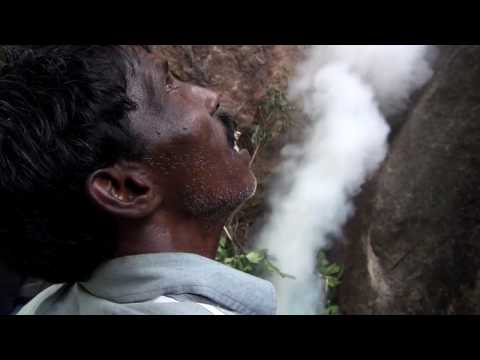 Honey Hunting In The Nilgiris